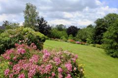 HH-Lawn-view